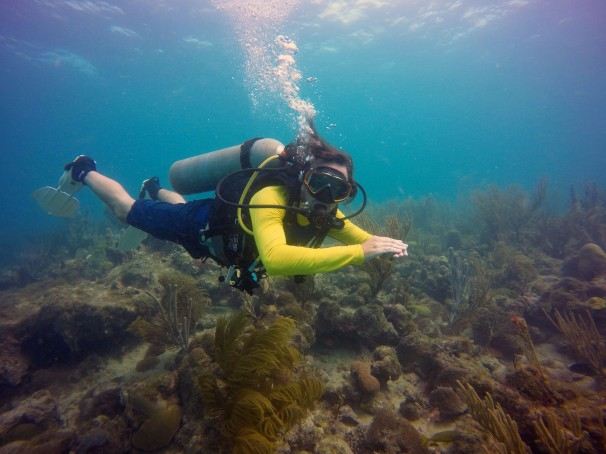 Diving Providencia.