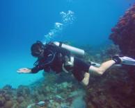 Steve Diving at Pyramid