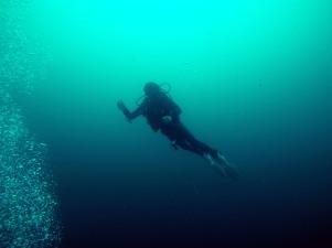 Deep dive at Búzios