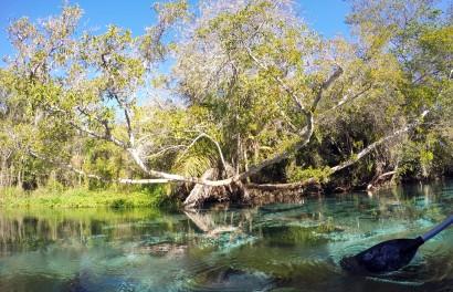 Rio Sucuri boat ride