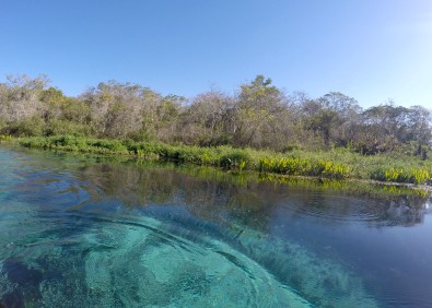 Rio Sucuri - Blue waters
