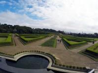 Botanical Garden Hedges