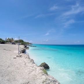 Bonaire: Shore DiversParadise!